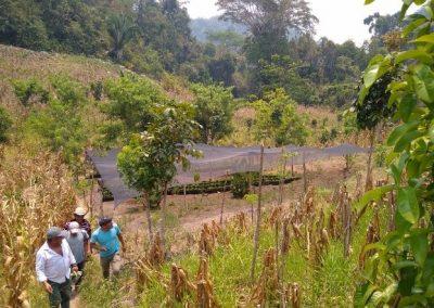 Conservando los Recursos Naturales del paisaje biocultural de Montañas Mayas-Chiquibul a través de la colaboración binacional