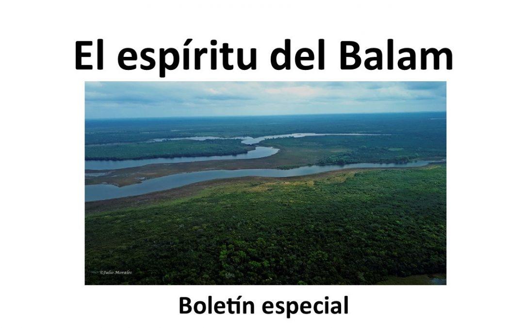 Boletín especial «El Espiritu del Balam».